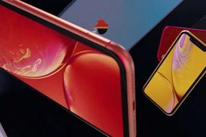 Video quảng cáo rực rỡ sắc màu của iPhone Xr