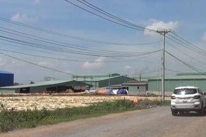 Tiếp tục làm rõ sai phạm ở Cụm công nghiệp Phước Tân