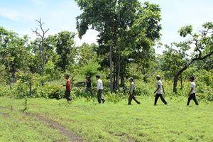 Hết năm 2018, có thể thu được 2.500 tỷ đồng tiền dịch vụ môi trường rừng