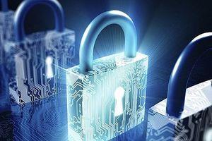 Ban hành Danh mục sản phẩm an toàn thông tin mạng nhập khẩu theo giấy phép