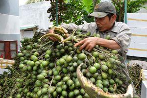 BẢN TIN TÀI CHÍNH-KINH DOANH: Kim ngạch xuất khẩu sắp đạt 200 tỷ USD, giá cau cao kỷ lục