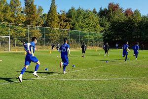 Bản nháp đầu tiên cho AFF Cup