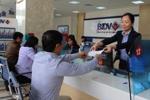 Đà Nẵng: Tạo điều kiện thuận lợi để doanh nghiệp vay vốn phát triển sản xuất kinh doanh