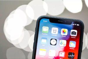 Sự khác biệt lớn nhất về camera trên iPhone Xr và iPhone Xs, Xs Max