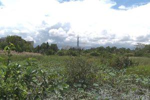Clip: Dân muốn sớm thực hiện khu đô thị mới ở Thanh Đa