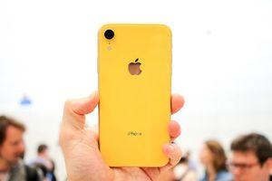 Chưa về Việt Nam, iPhone XR đã loạn giá