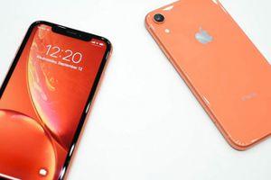 Được kỳ vọng nhiều nhưng liệu iPhone XR có đang 'bán ế'?