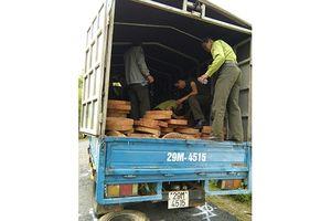 Tạm giữ đối tượng liên quan chở gỗ lậu, chống người thi hành công vụ