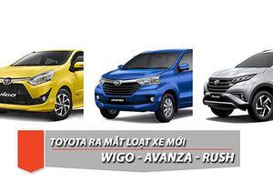 Toyota Wigo và Rush sẽ có mặt tại VMS 2018