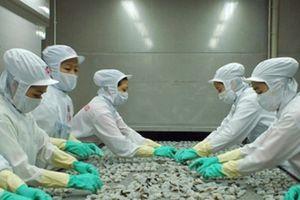 Minh Phú giao dịch đột biến 4 triệu cổ phiếu trước khi bàn tăng vốn