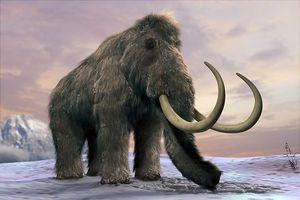 Phát hiện xương voi ma mút cổ đại 130.000 năm tuổi ở Anh