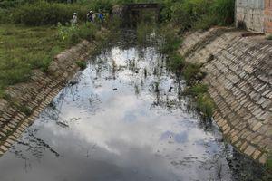 Bình Định: Đình chỉ hoạt động công ty xả thải gây ô nhiễm môi trường