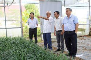 Tập trung hỗ trợ nguồn nhân lực phục vụ nông nghiệp ứng dụng công nghệ cao