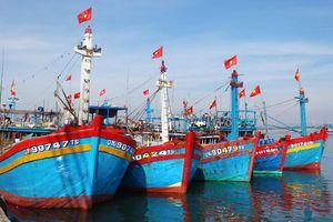 Tuyên truyền pháp luật cho hơn 50 thuyền trưởng, chủ tàu cá