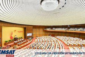 Trình tự bầu Chủ tịch nước tại kỳ họp Quốc hội