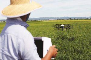 Trợ thủ trên không của nhà nông Nhật Bản