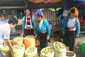 Sơn La: Nâng cao đời sống người dân tại các xã đặc biệt khó khăn