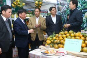 Nhiều hoạt động xúc tiến thương mại sản phẩm đặc sản vùng miền Việt Nam