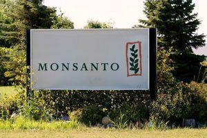 Tòa án giảm mức bồi thường đối với Monsanto vụ nạn nhân ung thư