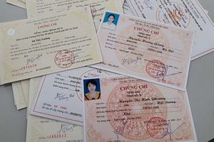 TPHCM: Nhiều SV đứng trước nguy cơ bị đuổi học vì chuẩn ngoại ngữ mới