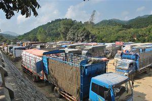Công ty Việt Trung bị chấn chỉnh về thu giá dịch vụ xe ra, vào bến bãi