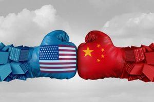 Chuyên gia tư vấn Trung Quốc chỉ giỏi lý thuyết suông