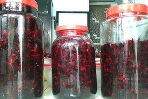 Tự ngâm rượu hoa atiso đỏ trị bách bệnh tại nhà