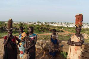 Những người phụ nữ Nam Sudan thà chết đói còn hơn vào rừng kiếm củi
