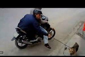 Hải Phòng: Trộm chó và dân làng hỗn chiến, 1 chết 4 bị thương