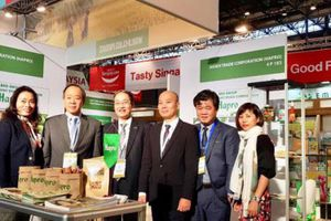 Hapro: Tăng cường xúc tiến thương mại, đẩy mạnh xuất khẩu hậu cổ phần hóa