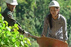 Hoa hậu Trần Tiểu Vy đào đất cùng bộ đội biên phòng