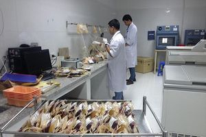 Trước thông tin phản ánh 'cò' bán máu lộng hành, lãnh đạo Bệnh viện Việt Đức nói gì?