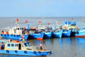 Thu hồi bằng khen 'sếp' chi cục thủy sản vì kỷ luật nhân viên sai thẩm quyền