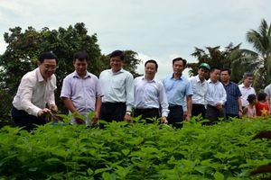Ứng phó thiên tai để xây dựng nông thôn mới bền vững