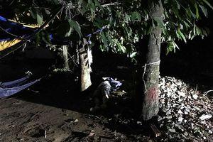 Phát hiện thi thể người đàn ông nằm bên gốc cây sau trời mưa