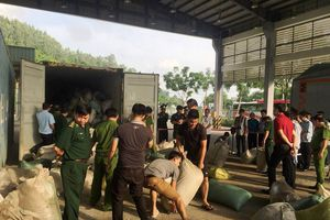 Phó Thủ tướng biểu dương vụ chặn 10 tấn ngà voi, vảy tê tê nhập lậu