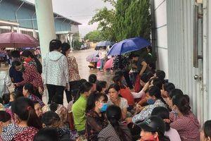 Công nhân Công ty TNHH Ivory Việt Nam tiếp tục đình công