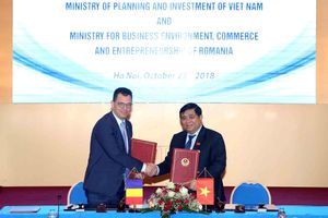 Việt Nam - Rumani hợp tác đầu tư và phát triển doanh nghiệp