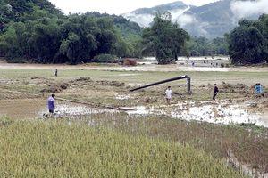 Mưa lũ gây thiệt hại lớn tại Lào Cai
