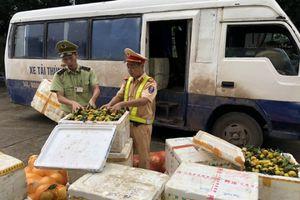 Quảng Ninh: Vận chuyển trái phép gần 1,4 tấn hoa quả