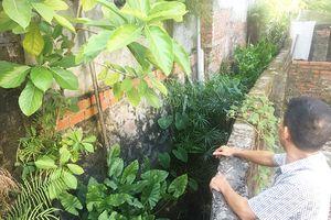 Xử lý dứt điểm việc xây dựng công trình trên rãnh thoát nước tại Hà Phong