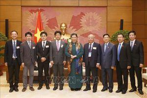 Phó Chủ tịch Thường trực Quốc hội Tòng Thị Phóng tiếp Đoàn chuyên gia y tế Nhật Bản