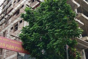 Phường Hà Cầu - Hà Đông: Tràn lan công trình xây dựng sai phép