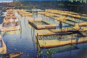 80 ảnh tham gia triển lãm cuộc thi 'Đối thoại với dòng sông'