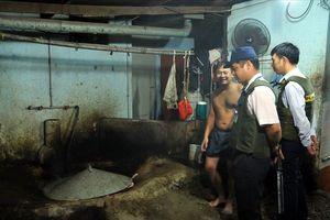Tìm giải pháp căn cơ xử lý heo mổ lậu tại Đồng Nai