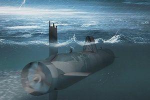 Bí mật tàu ngầm không người lái Nga tại Biển Bắc?