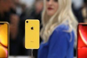 Chưa lên kệ, đã có video đập hộp và trên tay iPhone XR