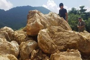 Vụ phá rừng phòng hộ: Chính quyền vào cuộc đá quý vẫn 'bốc hơi'