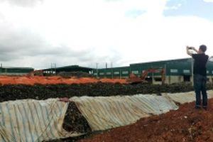 Phạt công ty chôn lấp chất thải rắn trái quy định 350 triệu đồng