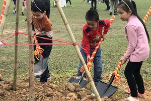 Phát động trẻ em trồng cây xanh và gắn bảng tên mình